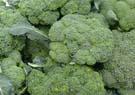 Brokolice - Obrázek